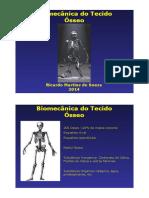 Biomecânica do Tecido Ósseo