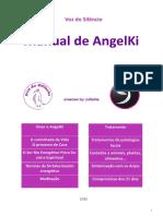 Manual AngelKi 2015