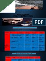 Lopez Calderon_Aurora-M23S2-Fase3