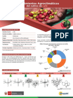 ficha-tecnica-11-cultivo-cafe (1)