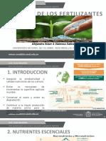 Industria de los fertilizantes - Formación de Rocas Fosfóricas