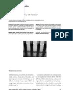 Dialnet-UnAnalisisDelSubsidioALaTarifa09-2879650.pdf