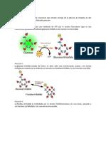 Reacciones de la glucolisis