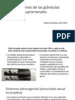 Alteraciones de las glándulas suprarrenales