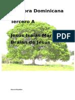 La Flora Dominicana.docx
