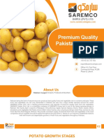 potato-presentation-Impex