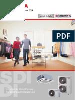 SDI-DI-2008-eng.pdf