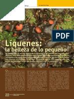 Dialnet-Liquenes-2798537