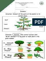 Science Examination for Nursery- Plants