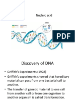 DNA RNA & Protein