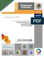 SSA_024_08_GRR_caries.pdf