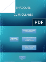 Enfoques_Curriculares