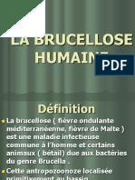 LA BRUCELLOSE HUMAINE