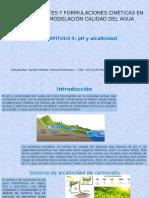cap4 (1).pptx