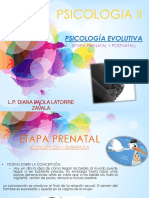 etapa prenatal y postnatal- PSICOLOGIA II-ALDAMA.pptx