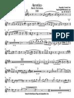 Trompeta 2 Bb nereidas