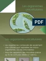 CTOS - Les organismes unicellulaires.pdf