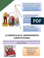 Yurico Peticion de Herencia