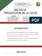 4.PLAN NACIONAL DE SANEAMIENTO LECHE