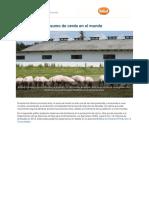 produccion_y_consumo_de_cerdo_en_el_mundo-5e44727eedc9f