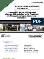 HORTISALUD.pdf