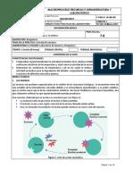 78.actividadenzimaticadelacatalasayamilasa.pdf