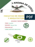 ECOLOGIA_Y_MEDIO_AMBIENTE_TEMA_Ecosellos.docx