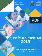 CURRÍCULO EDUCAÇÃO INFANTIL 2019 (1).pdf