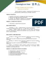 0701 Programa Temático Análisis de Puestos .pdf
