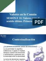 VC11_Visual.pdf