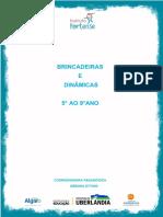 Dinamicas-Pedagogicas-5-ao-9-ano.pdf
