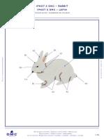 https___www.boutique-dmc.fr_media_dmc_com_patterns_pdf_PAT0411_Ipnot_x_DMC_-_Rabbit