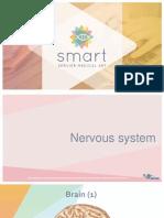 Nervous_system (2).ppt