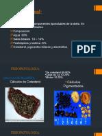 fisiopatologia Colecistitis