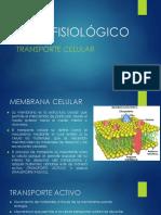 NIVEL FISIOLÓGICO.pdf