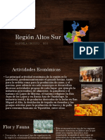 Región Altos Sur