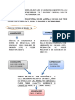 1metabolismo celular 18-1