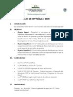 PLAN DE MATRICULA 2020.docx