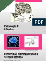 PSICOLOGIA B - Cérebro 2