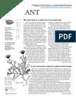 Fall-Winter 2007 Rare Plant Press, Washington Rare Plant Care and Conservation