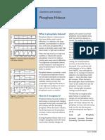 B-268 Phosphate Hideout.pdf