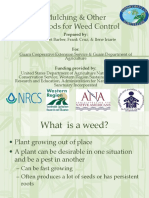 Mulching and other methods of weed control (3).ppt