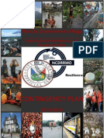 Action 16 - Disaster Mitigations-1.pdf