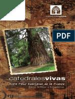 catedrales2.pdf