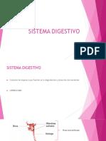 SISTEMA_DIGESTIVO_repaso-1[1].pptx