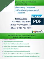 SAP_MDG_Master_Data_Governance_online_tu