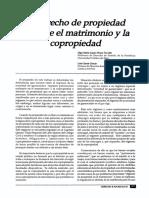 17316-68736-1-PB.pdf