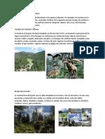 TIPOS DE REGIONES NATURALES