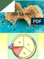 06_cell_division_INTROBIO(2).pdf