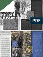 Baseado na lei - scan revista maconha brasil